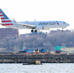 Boeing 737 Max 8 American Airlines.